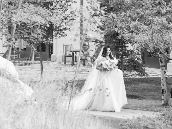 Shae & Damon Wedding  Shae & Damon Wedding
